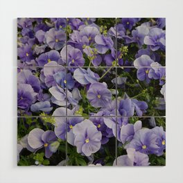 Pansy flower Wood Wall Art