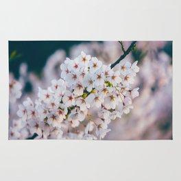 White Cherry Blossom On Branch Rug