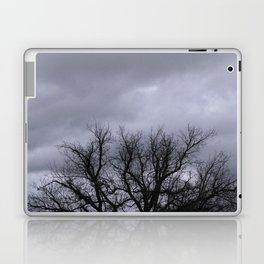 Dusk in the Valley Laptop & iPad Skin