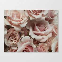 Delicate Roses Canvas Print