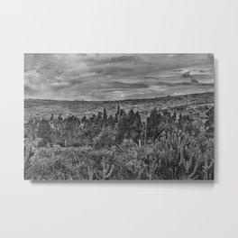 Ecuador Landscape Scene at Andes Range Metal Print