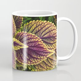 Plant Patterns - Coleus Colors Coffee Mug