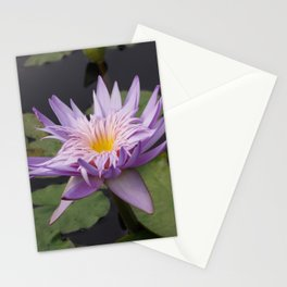 Rosy lavender water lily Stationery Cards