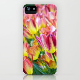 The Last Hurrah of Spring iPhone Case