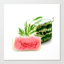 SQUARE WATERMELON Canvas Print