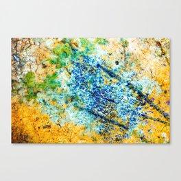 Texture Canvas Print