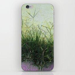 Minimal Flora - Hanging Garden iPhone Skin