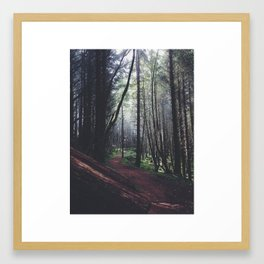 Mornings on the Pacific Coast Framed Art Print