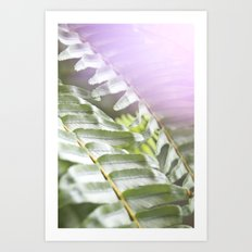 Fern + Photons Art Print