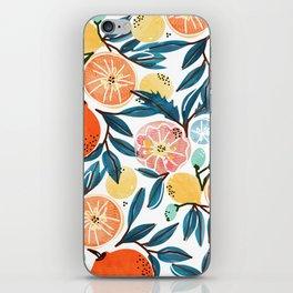 Fruit Shower iPhone Skin