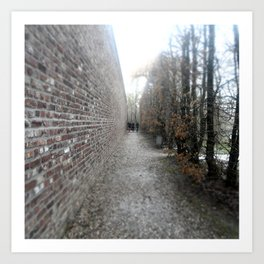 Lined Path Art Print