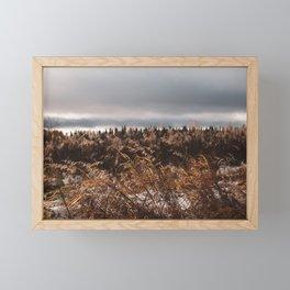 Fall Fireweed Framed Mini Art Print
