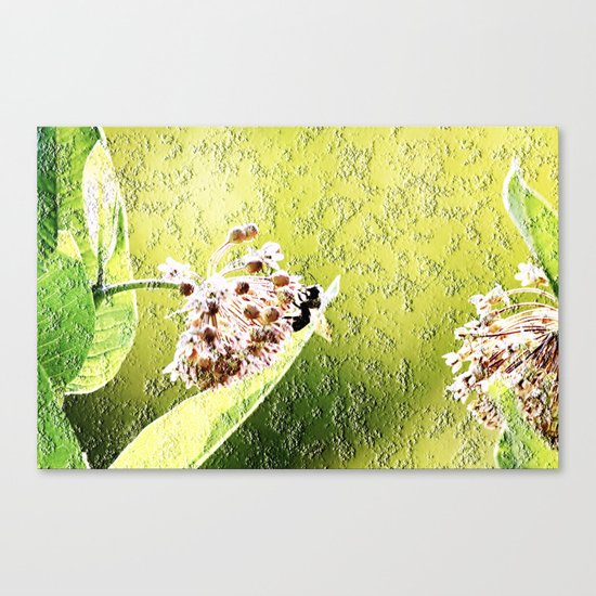 Blooming in the morning (granite) Canvas Print