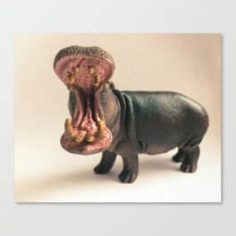Hippo Mouth Canvas Print