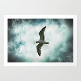 Seagull Before A Cloudy Sky Art Print