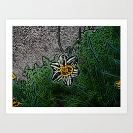 Surreal White Daisy  Art Print