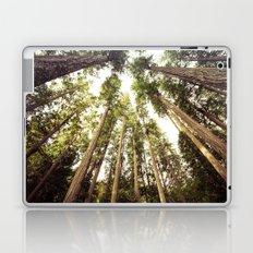 Forest Sky - The Canopy Laptop & iPad Skin