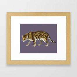 Fierce Jaguar Framed Art Print