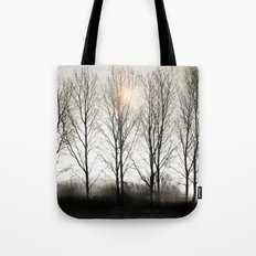 winter sequence Tote Bag