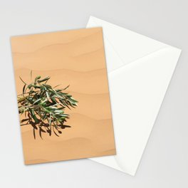 Olive branch in sand Dunes Stationery Cards