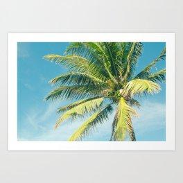 Hookipa Palm Dreams Art Print