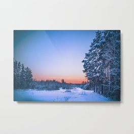 A path in enchanted forest Metal Print