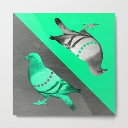 Pigeon's reflexion Metal Print