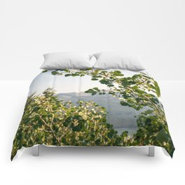 Aspen Leaves Comforters
