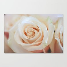 Soft to Touch Canvas Print