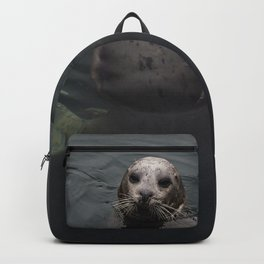 Friendly Seal Backpack