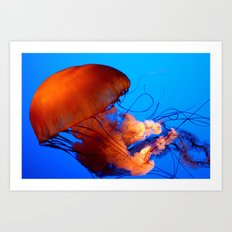 Underwater Dancer Art Print