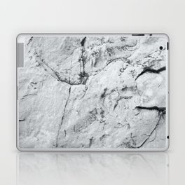 Old Stone Wall VI Laptop & iPad Skin