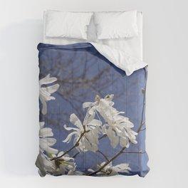 Star filled sky (Star Magnolia flowers!)      Edit Comforters