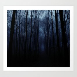 Deep Forest Art Print