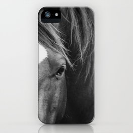A Horse's Stare iPhone Case