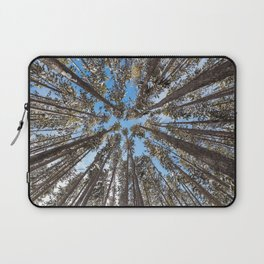 Yellowstone National Park - Lodgepole Forest Laptop Sleeve