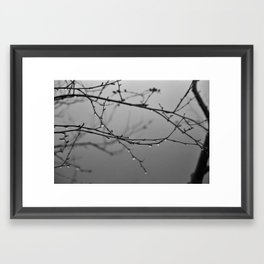 A Whisper No. 04 Framed Art Print