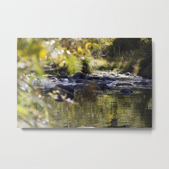 Creekside View Metal Print