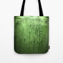 Old green window at night Tote Bag
