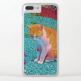 Popular Animals - Cat Clear iPhone Case