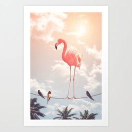 FLAMINGO & FRIENDS Kunstdrucke