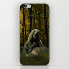 Forest Songs iPhone & iPod Skin
