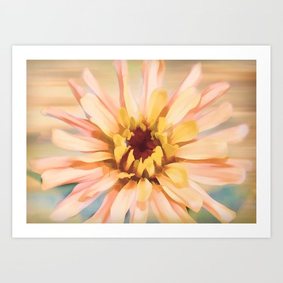 Sunset Zinnia Art Print