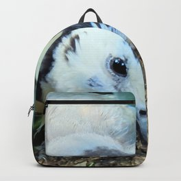 Blue Jay bird Backpack