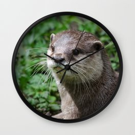 Asian short clawed otter Wall Clock