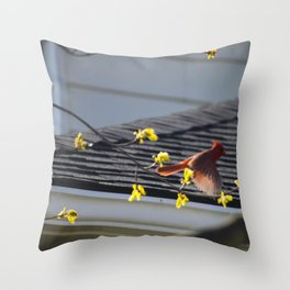 Just Spread Your Wings and Fly Throw Pillow