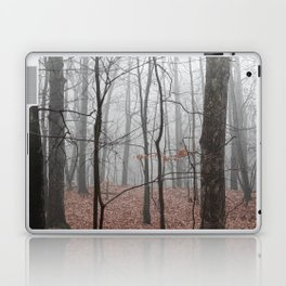 Woods on a Foggy Sunday Stroll Laptop & iPad Skin
