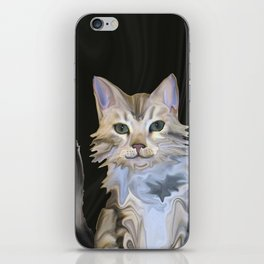 Marble Meows iPhone Skin
