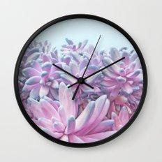 Sweet Succulents Wall Clock