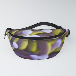 Coral Euphylia Golden Torch Fanny Pack